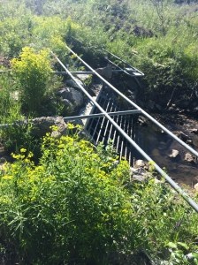bridge-collapse-fish-creek-park-2013-alberta-flood-pregnant-runner